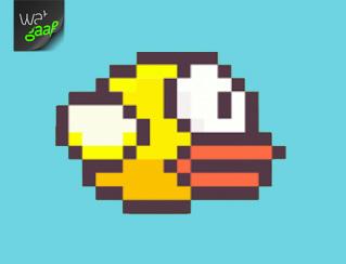 Flappy Bird, Wat gaaf!